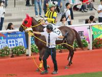 reputable site 5c814 0634b Shadai Thoroughbred Club 社台サラブレッドクラブ